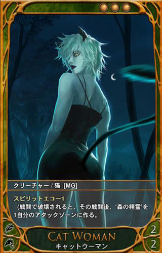 RUSH MMORPG PLAYERS: CARTE(カ...